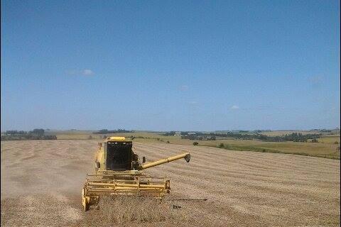 Imagem do Dia - Colheita de soja em Capão Do Cipó (RS), na Agropecuária São Judas Tadeu do Sr Jairo Rosado