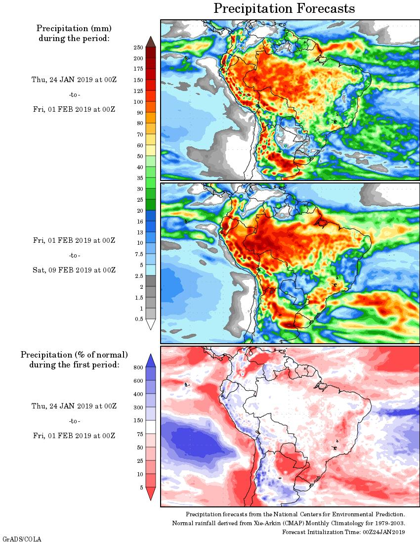 Mapa com a tendência de precipitação acumulada para o período de 23 de janeiro até 08 de fevereiro - Fonte: National Centers for Environmental Prediction/NOAA
