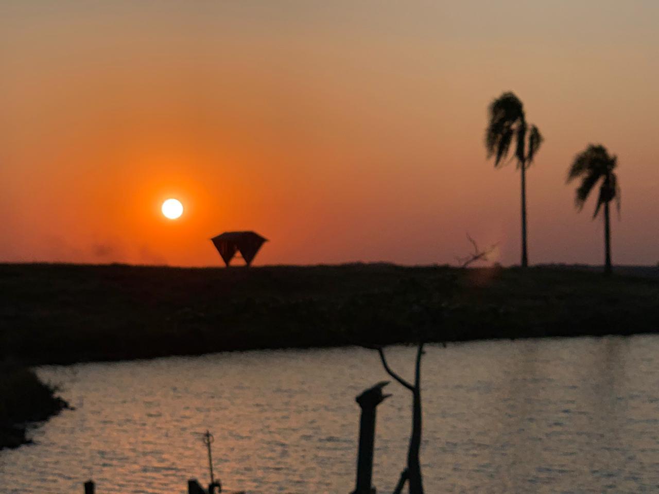 Foto em Campo Erê (SC). Envio do engenheiro agrônomo Fernando Boni