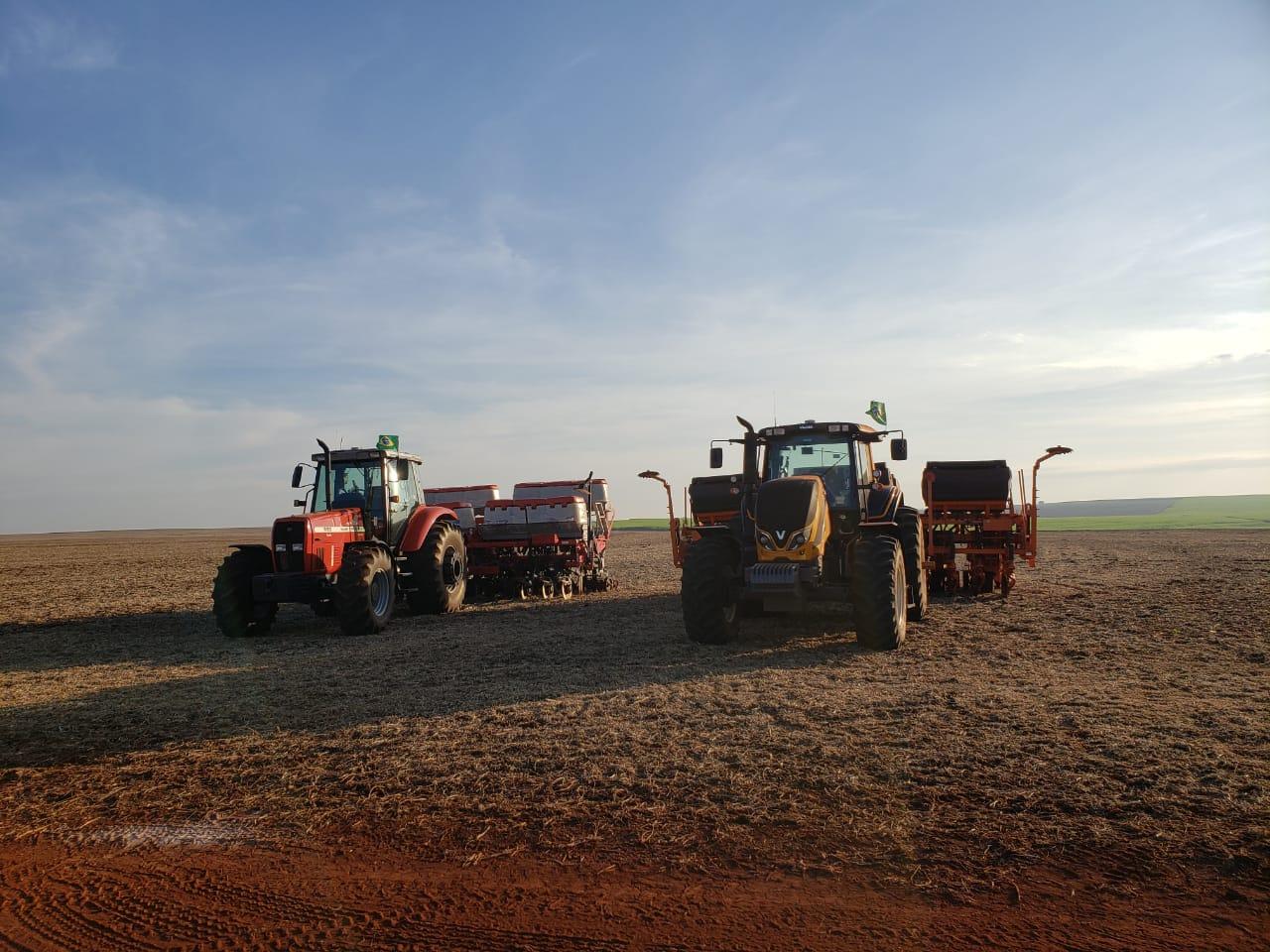 A colheita continua em Cruzália (SP) - Anderson Rodrigo Totti