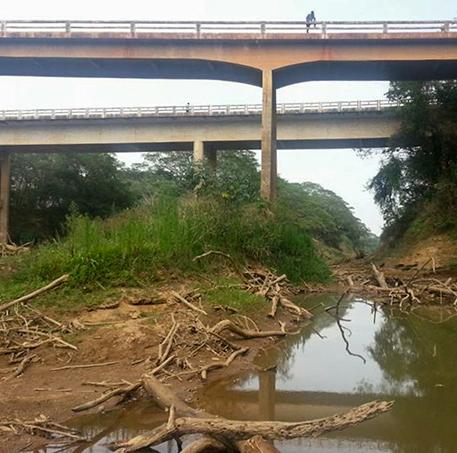 Drama da Seca no Brasil 6 - Foto: G1