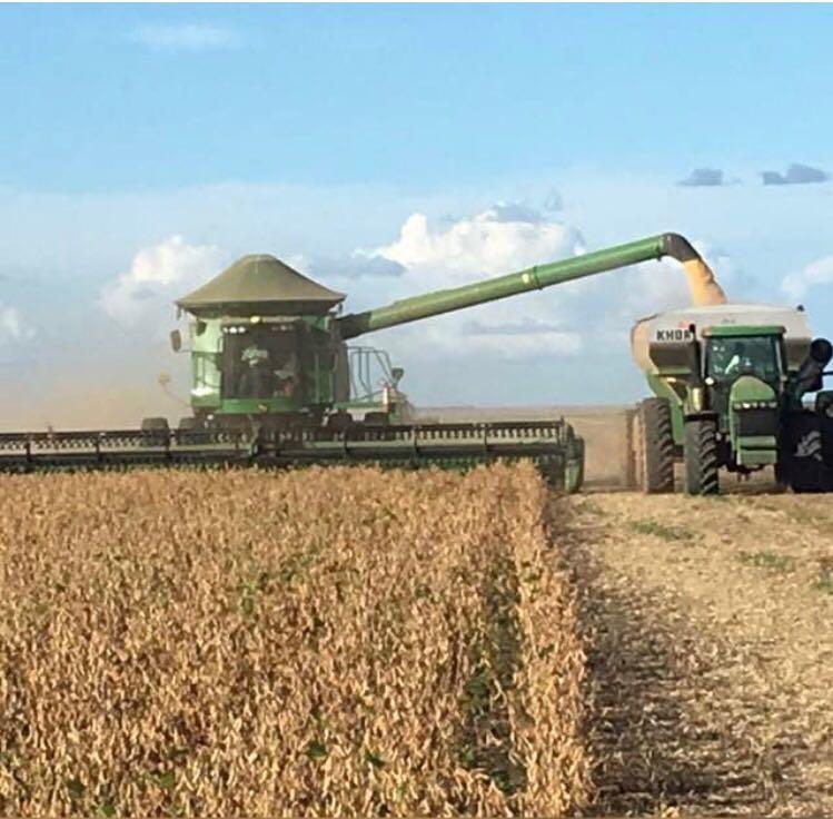 Finalizando a colheita da soja na Fazenda Emílio em Uruçuí (PI)