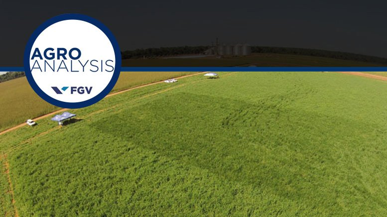 Resultado de imagem para A produção agrícola brasileira pode ser sustentável?, por Agroanalysis/FGV