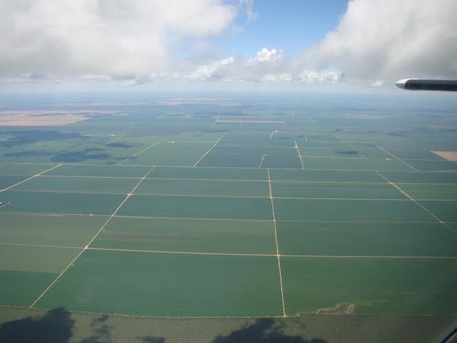 Imagem do dia - Foto da região de Roda Velha, município de São Desidério (BA). Envio do engenheiro agrônomo Armando Ayres de Araujo