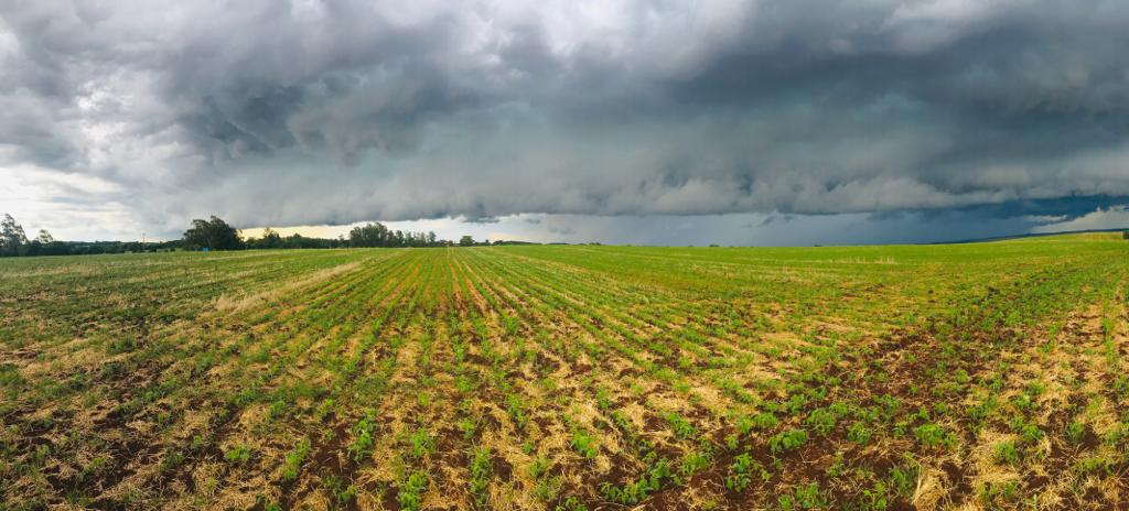 A chuva retornou em Campo Novo (RS) após 23 dias de seca. Envio de Rogério Dallagnese