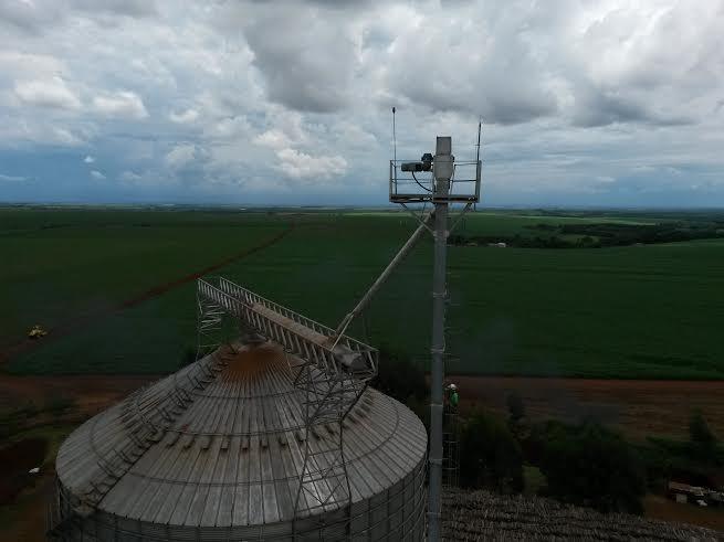 Imagem do dia - Milho safrinha na região de Missal (PR). Imagem enviada pelo representante comercial, Leandro Soethe.