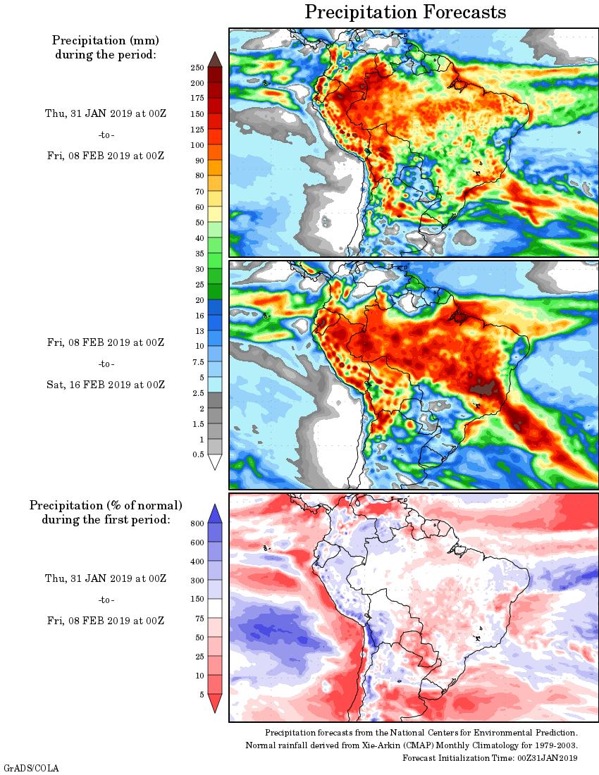 Mapa com a tendência de precipitação acumulada para o período de 31 de janeiro até 16 de fevereiro - Fonte: National Centers for Environmental Prediction/NOAA