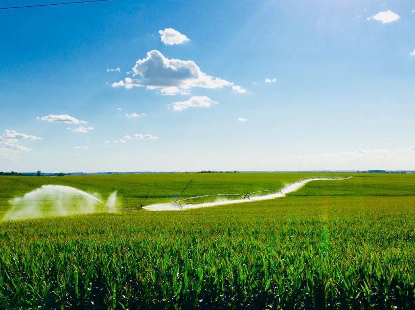 Pivô central na lavoura de milho em São Borja (RS). Envio de Geovane Ziegler