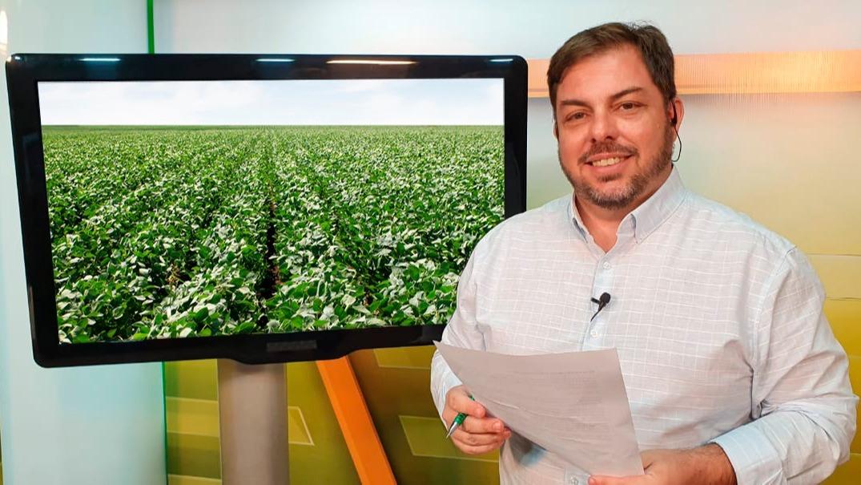 Aleksander estudio lavoura de soja