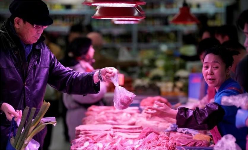 China carne suína venda suínos