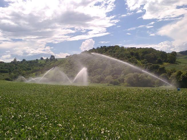 Imagem do dia - Lavoura de soja irrigada em Corbélia (PR), do produtor Claudir Postal. Envio de Fabrício Postal
