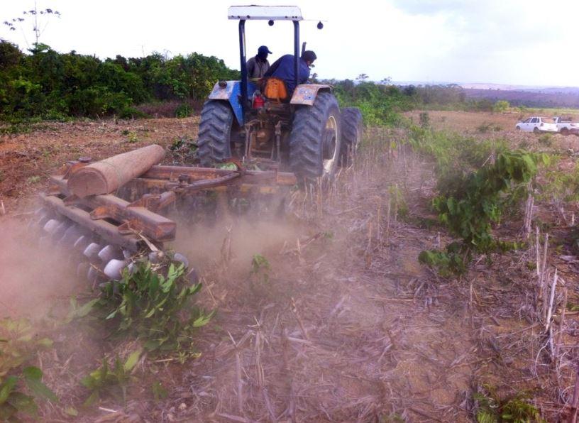 Abertura de área, plantio se aproximando no Estado do Pará. Envio Equipe de Agrônomos da AgroMais