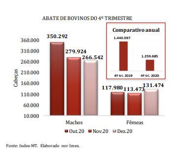 Abate de bovinos no 4ª trimestre de 2020 - IMEA