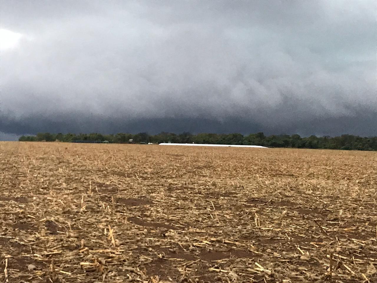 Ontem à tarde na Fazenda, 60 mm, em Rio Verde (GO). Envio de Vanderlei Secco