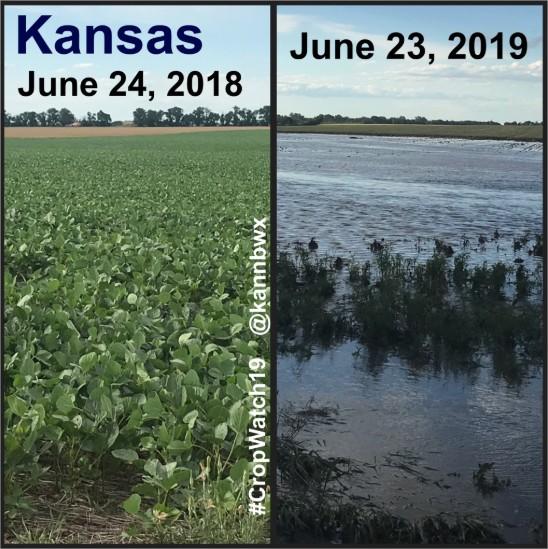 Kansas 2019