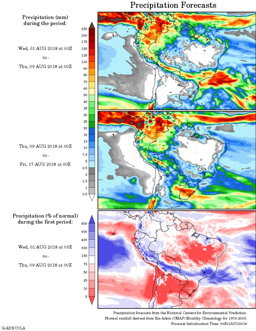 Mapa com a precipitação acumulada para o período de 01 de agosto até 16 de agosto - Fonte: National Centers for Environmental Prediction/NOAA