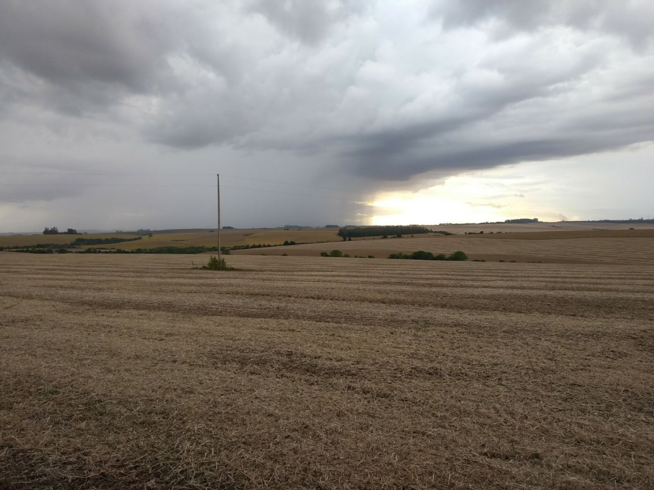 Colheita de soja da variedade NS 5445 Ipro na agropecuária Jacomina em Cruz Alta (RS)