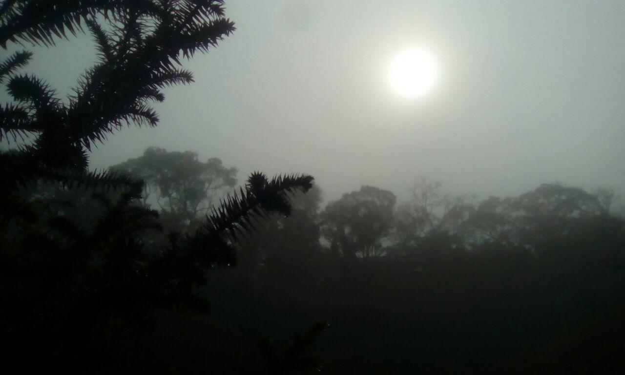 Céu com neblina em Itaiópolis (SC). Envio de Paulo Adamek
