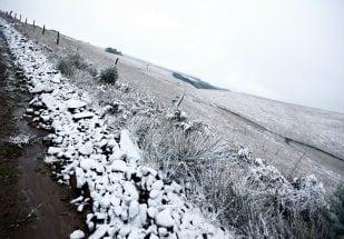 Neve em São José dos Ausentes - Foto Globo Rural