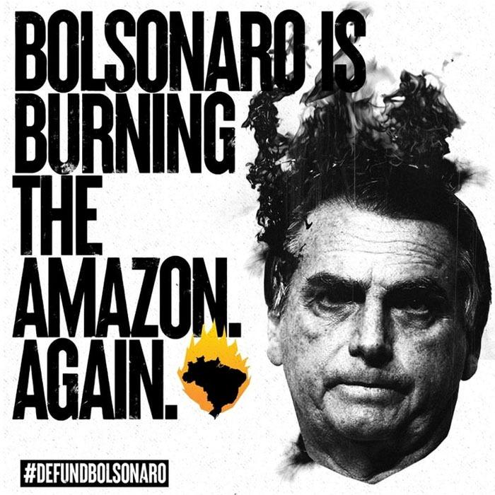 Defunds Bolsonaro - Cartaz