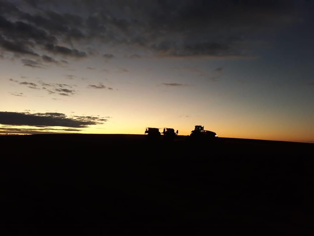 Encerramento da semeadura da cultura do trigo da empresa Sementes Fabris em Seberi (RS). Envio de Danimar Manfio.