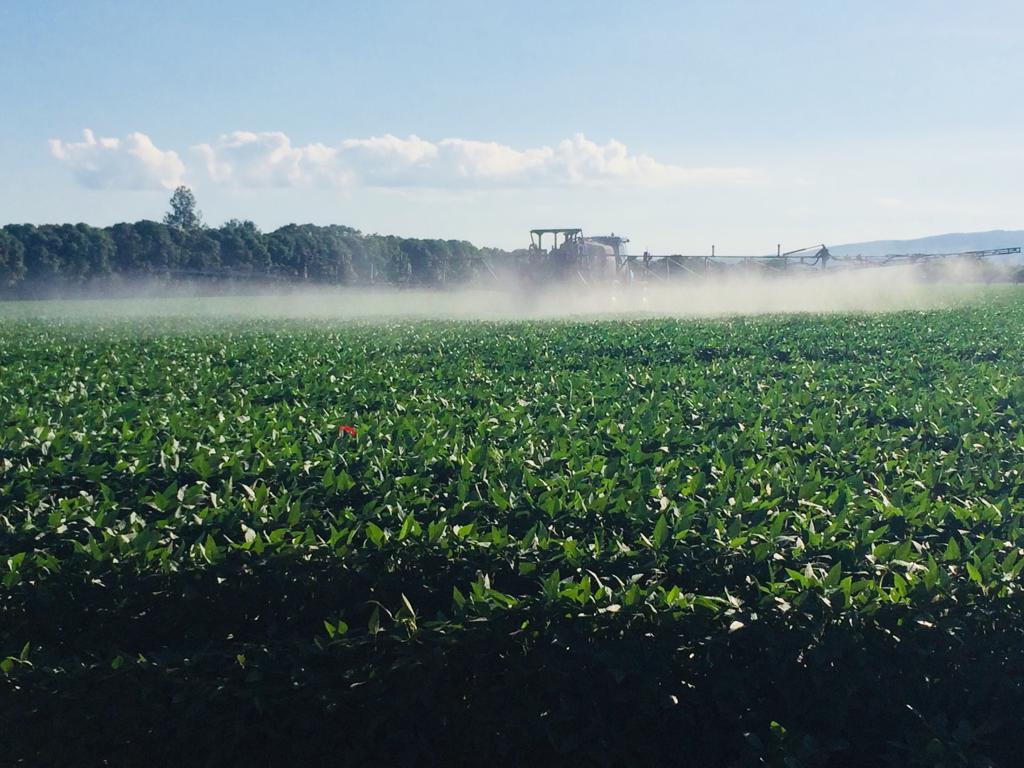Pulverização em lavoura de soja na cidade de Rio Verde (GO). Envio de Alex Zamonaro