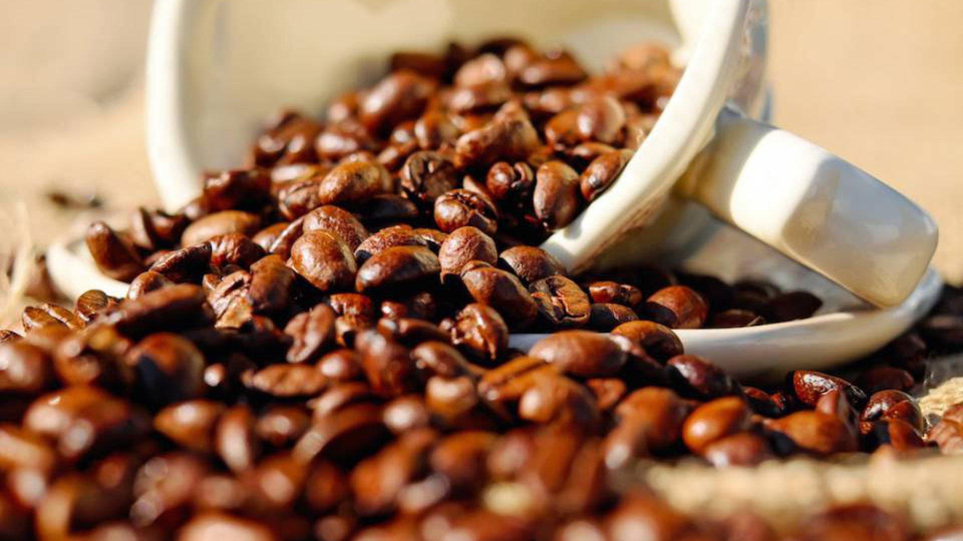 Exportação de café na safra 2018/2019 bate novo recorde, segundo ICO - Notícias Agrícolas