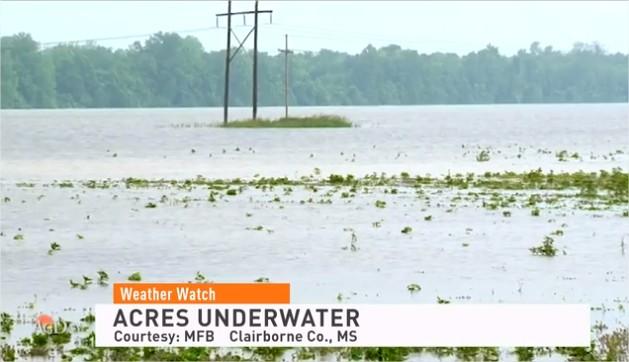 Enchentes no Mississipi