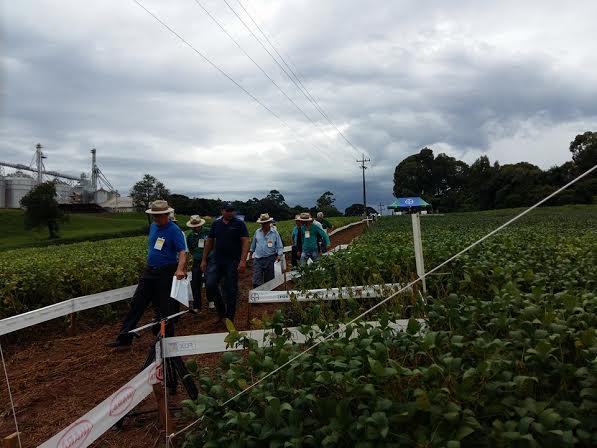 Imagem do dia - Dia de Campo da filial de Cereais Rostirolla, em Mato Castelhano (RS). Envio de Henrique Rocha