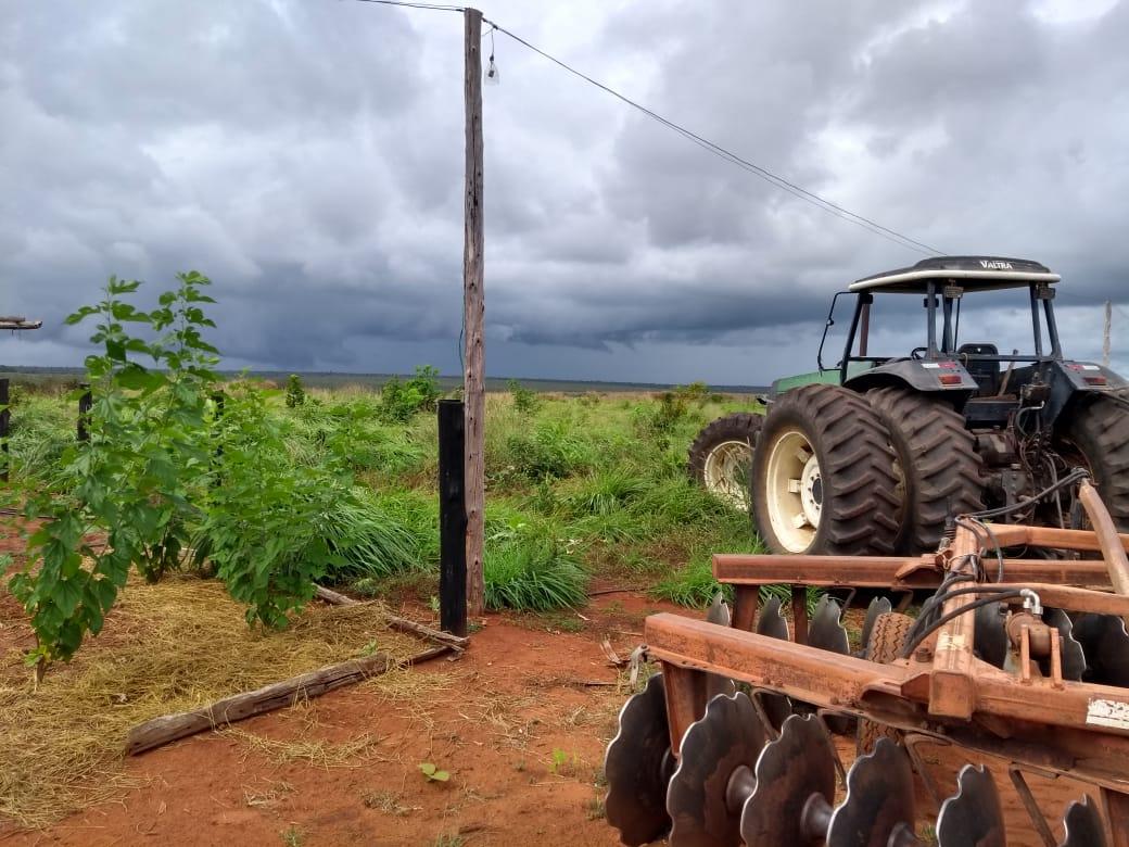 Chuva Fazenda Morro da Alegria em Balsas (MA). Envio de Clodoaldo de Césaro