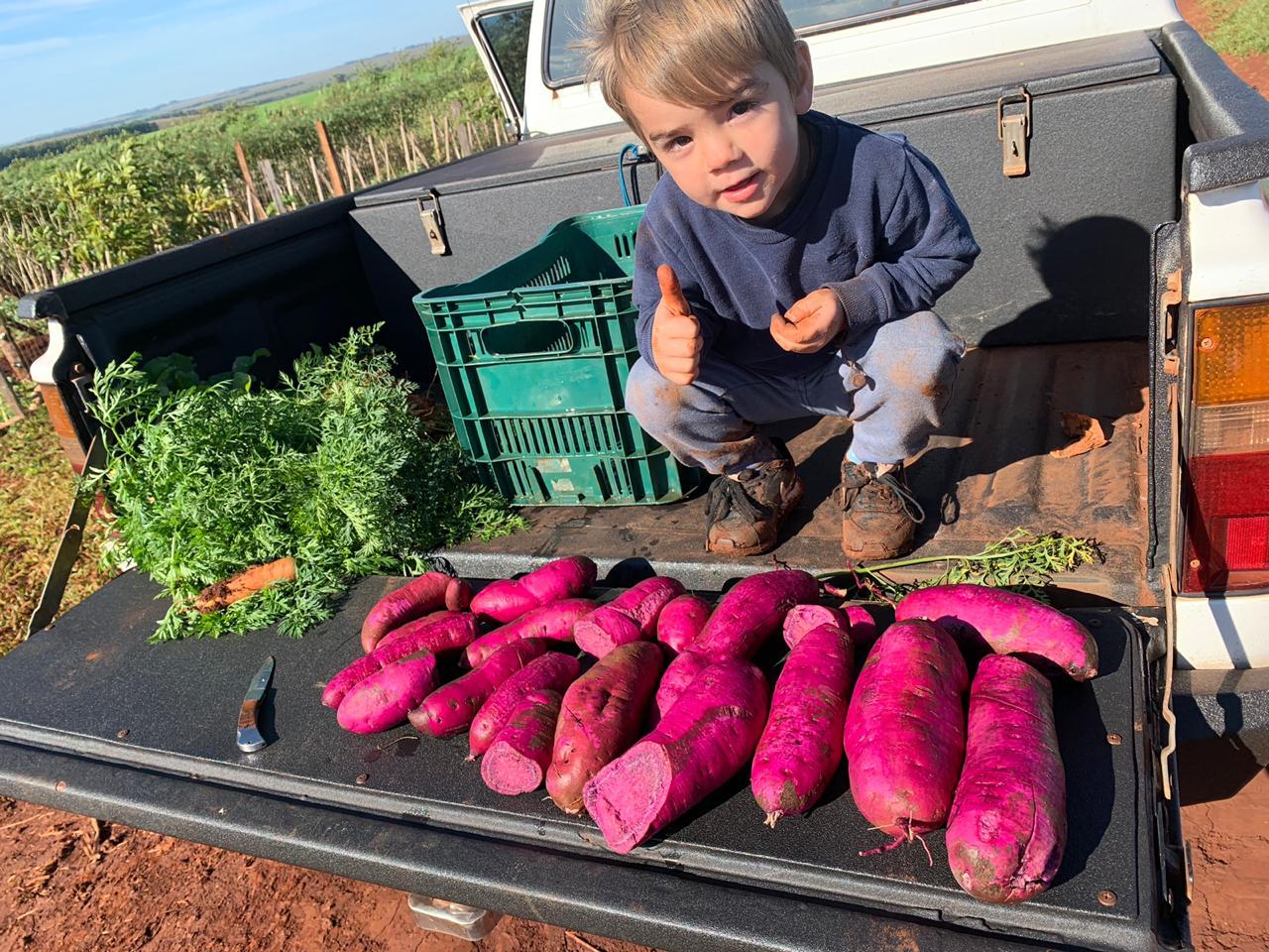 Marcos Bianchi fazendo colheita em nossa horta em Naranjal / Paraguay. Envio de Danoil Bianchi