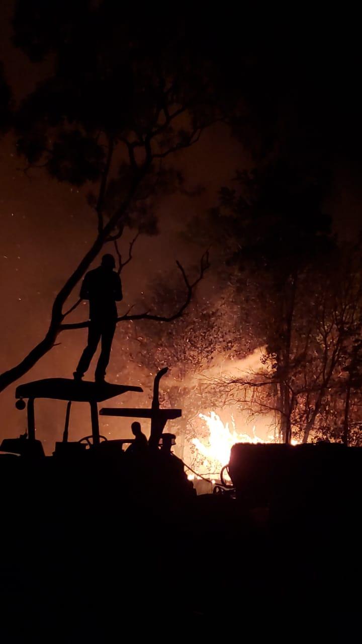 Produtores lutando para apagar o fogo em Natividade (TO). Envio de Flávia Germendorff