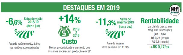 retrospectiva alface cepea 2019