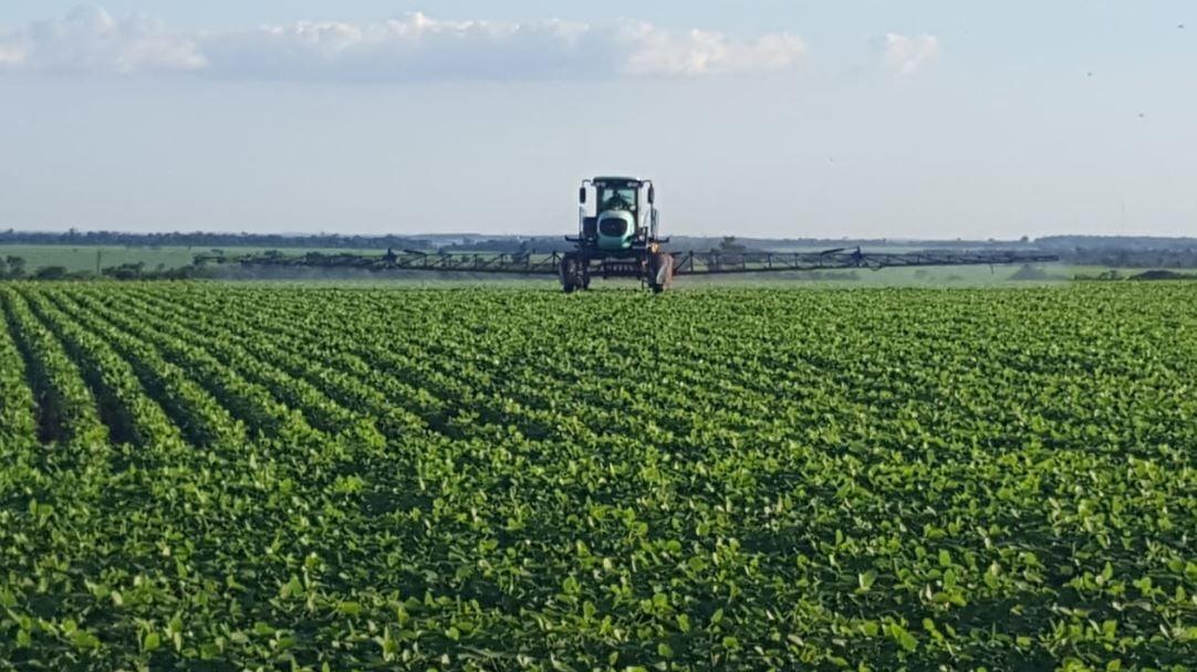 Lavouras de soja em Mbaracayú, no Paraguai. Envio de Fábio Graeff