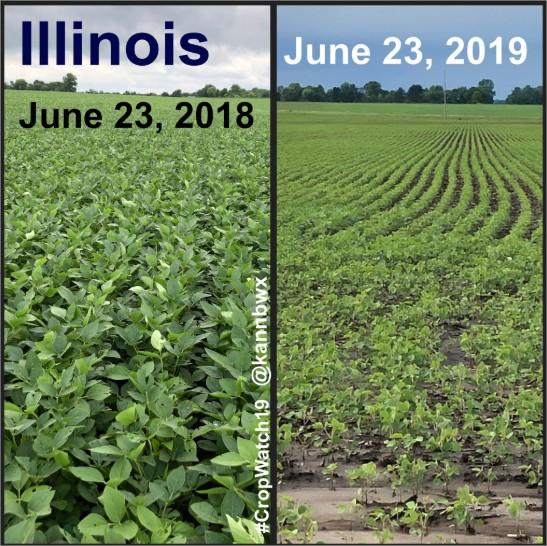 Illinois 2019
