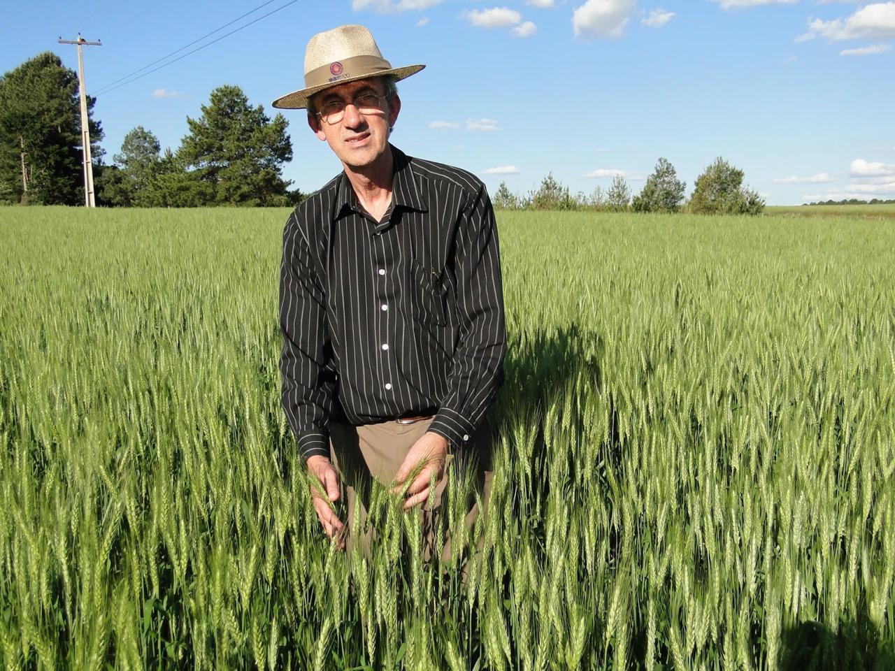 Professor Floss e lavoura de milho