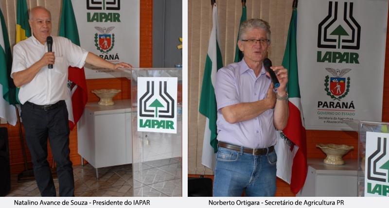 IAPAR - Natalino Avance de Souza e Norberto Ortigara