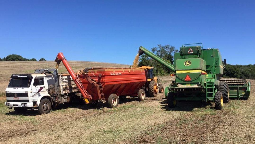 Colheita de soja na Fazenda Caçula em Ibiacá (RS). Envio de Lourenço Scariot