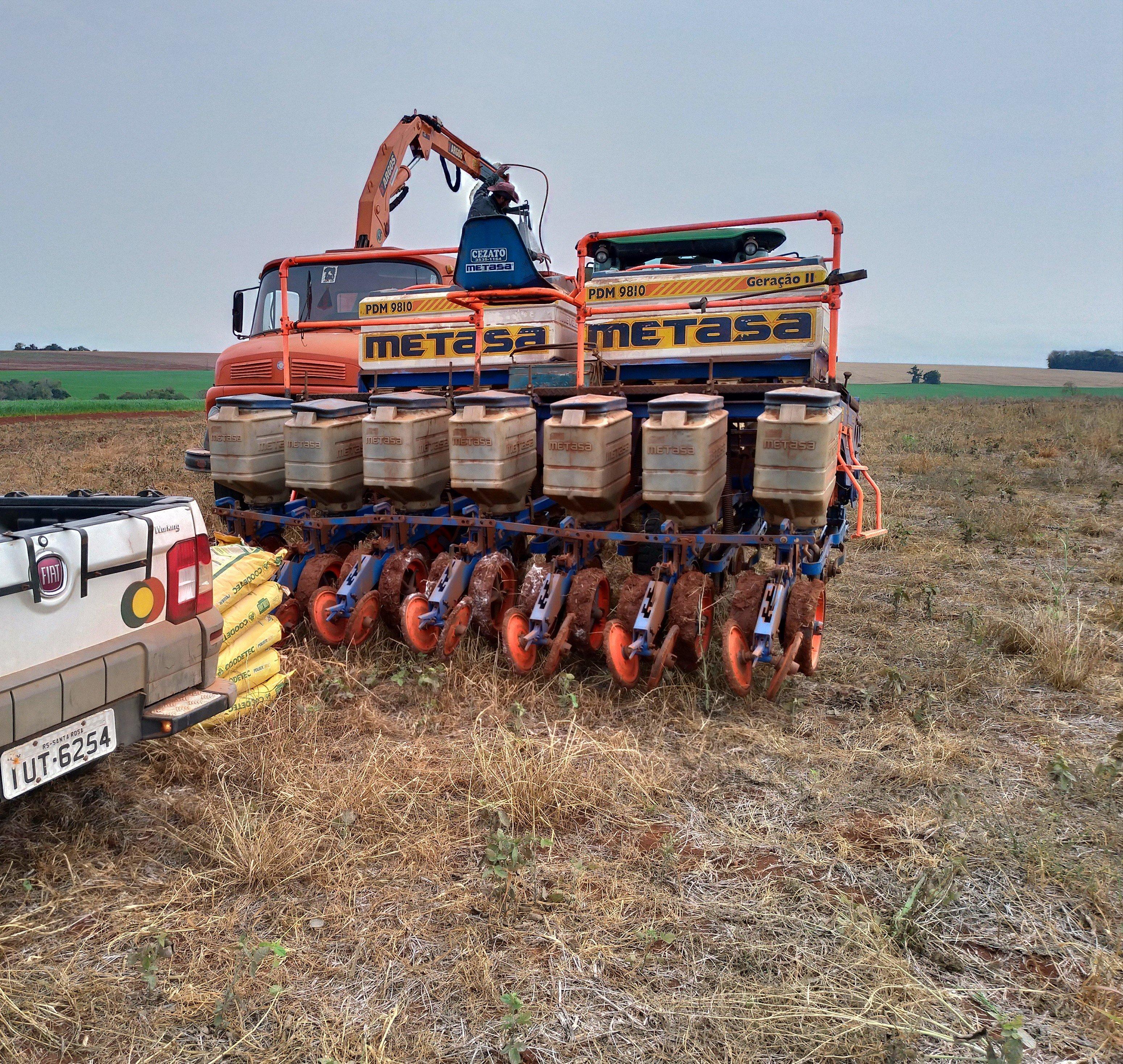 Plantio de milho no município de Independência (RS). Envio do Técnico. Ag Thailan Golin
