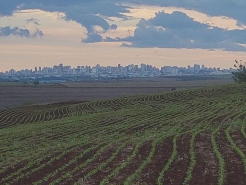 União campo de soja e cidade de Londrina (PR). Envio de Zé Alfredo de Ibiporã