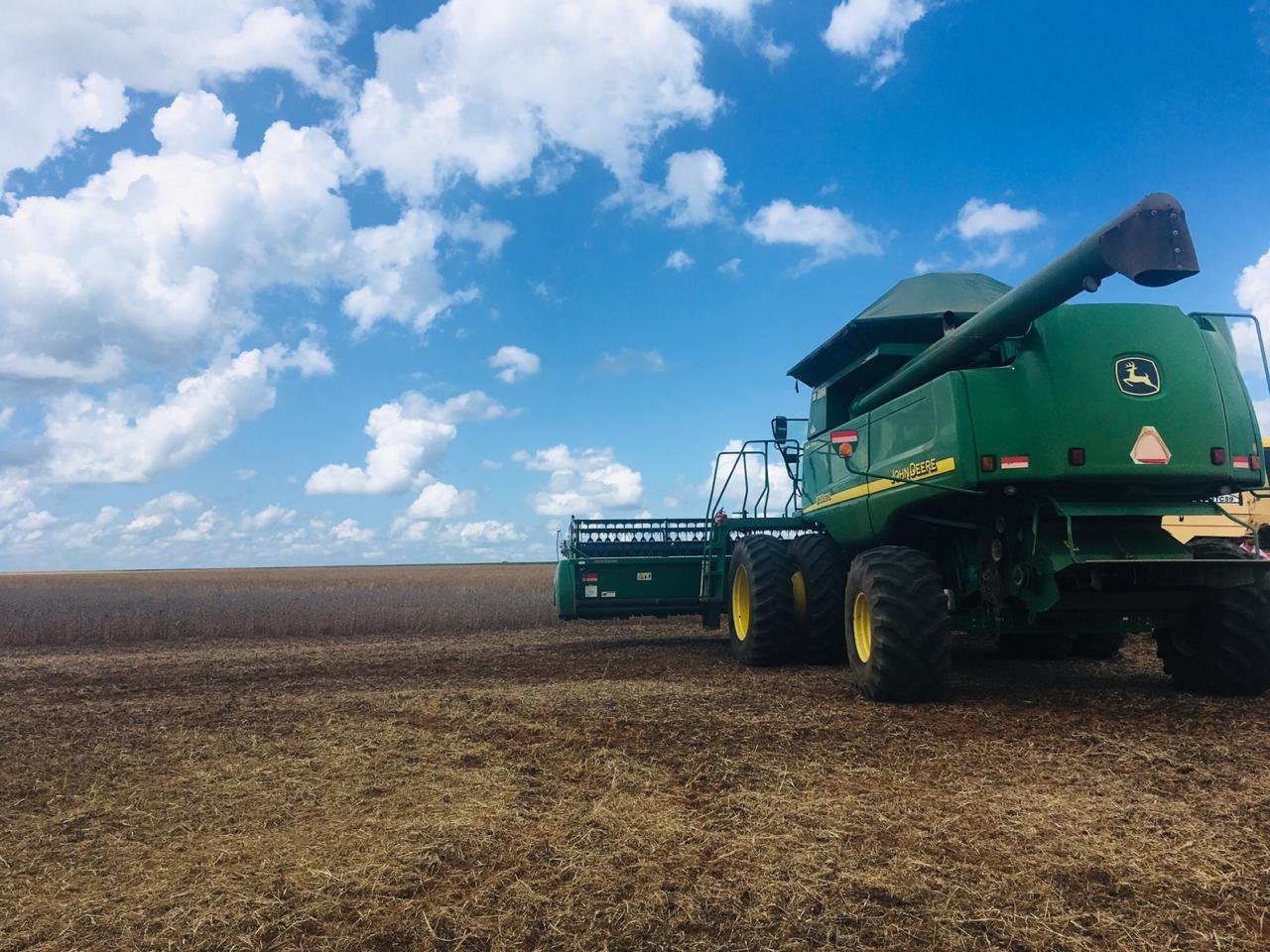 Início da colheita 2018/19 soja Nova Ubiratã/MT