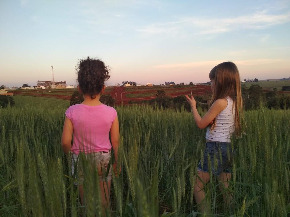 Alice e Lara meio ao trigo em Ivaiporã (PR). Envio de Flaviane Freitas