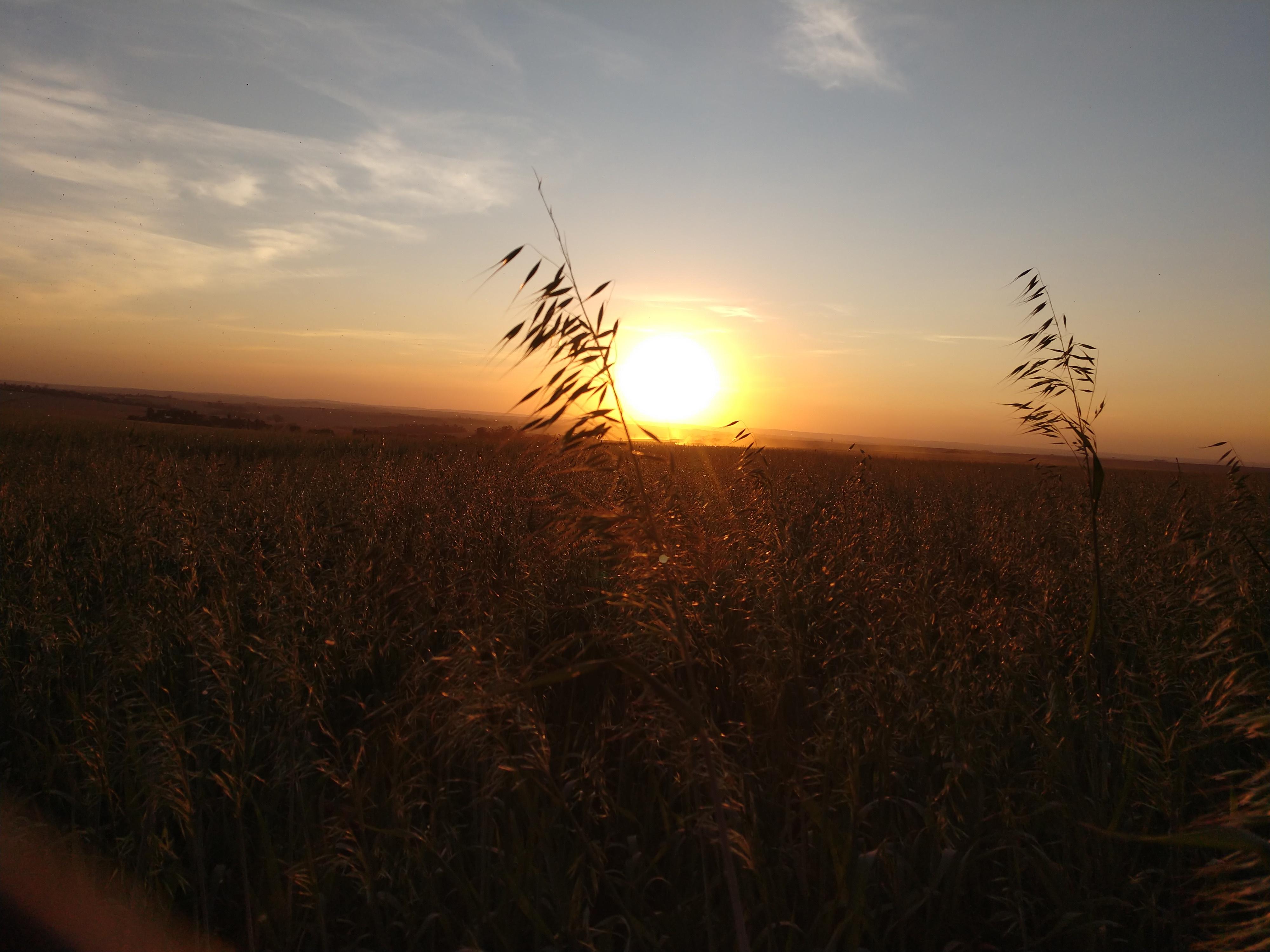 Por do sol. Envio de Cleber Ribeiro da Mota