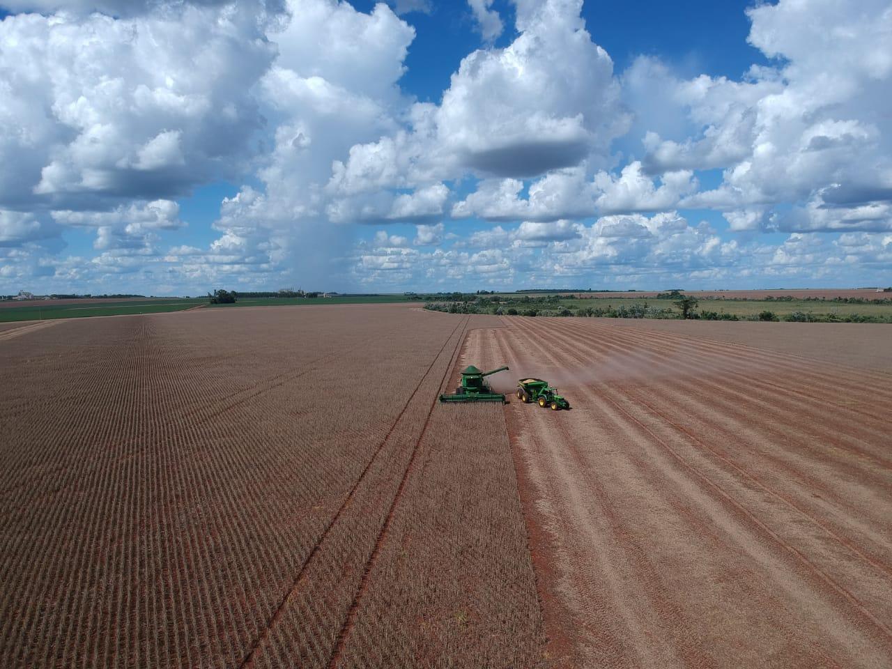 Colheita da soja em Corpus Christi, Py. Em relação a safra 2017 2018, houve redução de até 40 sacas/hectare devido a estiagem. Envio de Lidiane Miotto