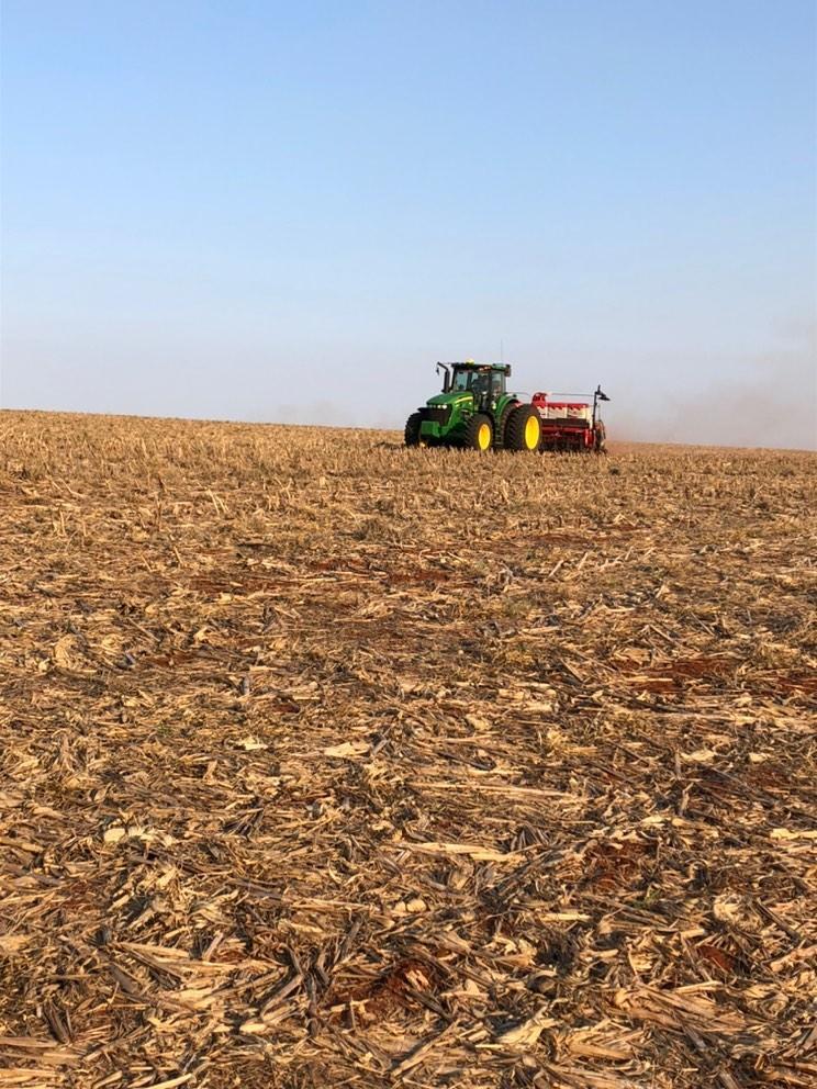 Inicio da semeadura na região de Corpus Christi - Paraguay. Envio do engenheiro agrônomo Tiago Augusto Mendonça.