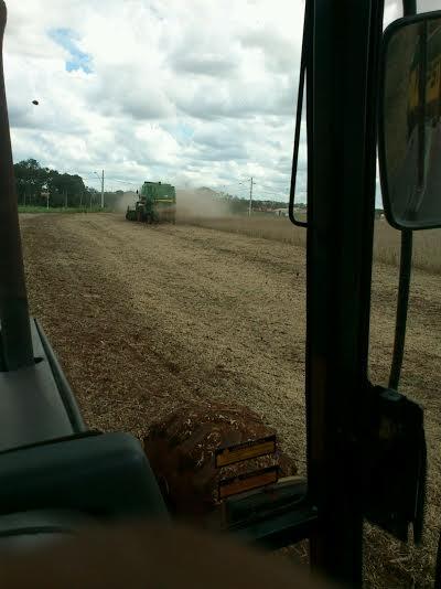 Colheita da soja na região de Ituiutaba (MG). Imagem dos produtores rurais, Alberto e Egídio Hanauer.