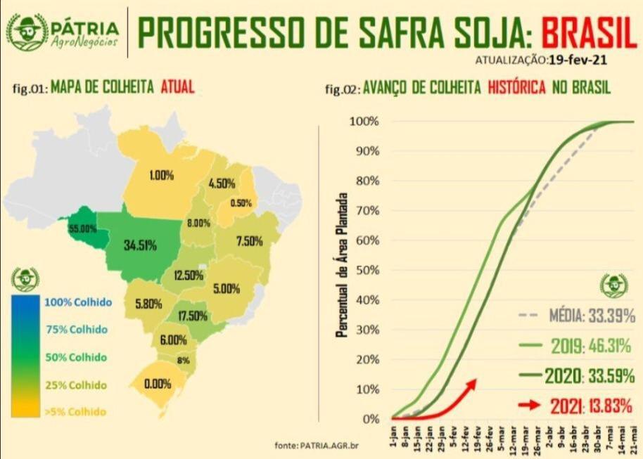 Colheita de soja no Brasil - Fonte: Pátria Agronegócios