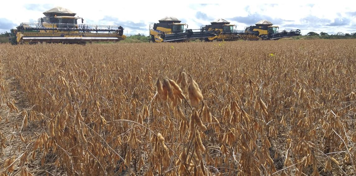 Finalizando a colheita de soja na Fazenda União em Bom Jesus (PI). Envio de Abel Pieta