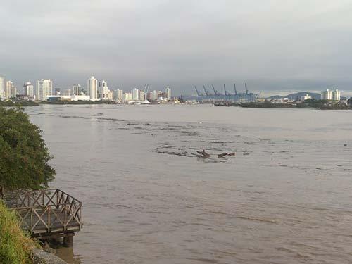 Chuvas Porto de Itajaí