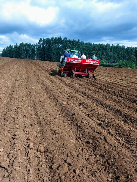 Inicio do plantio de batata em São Mateus do Sul (PR). Envio do produtor Fabiano Antonovic.